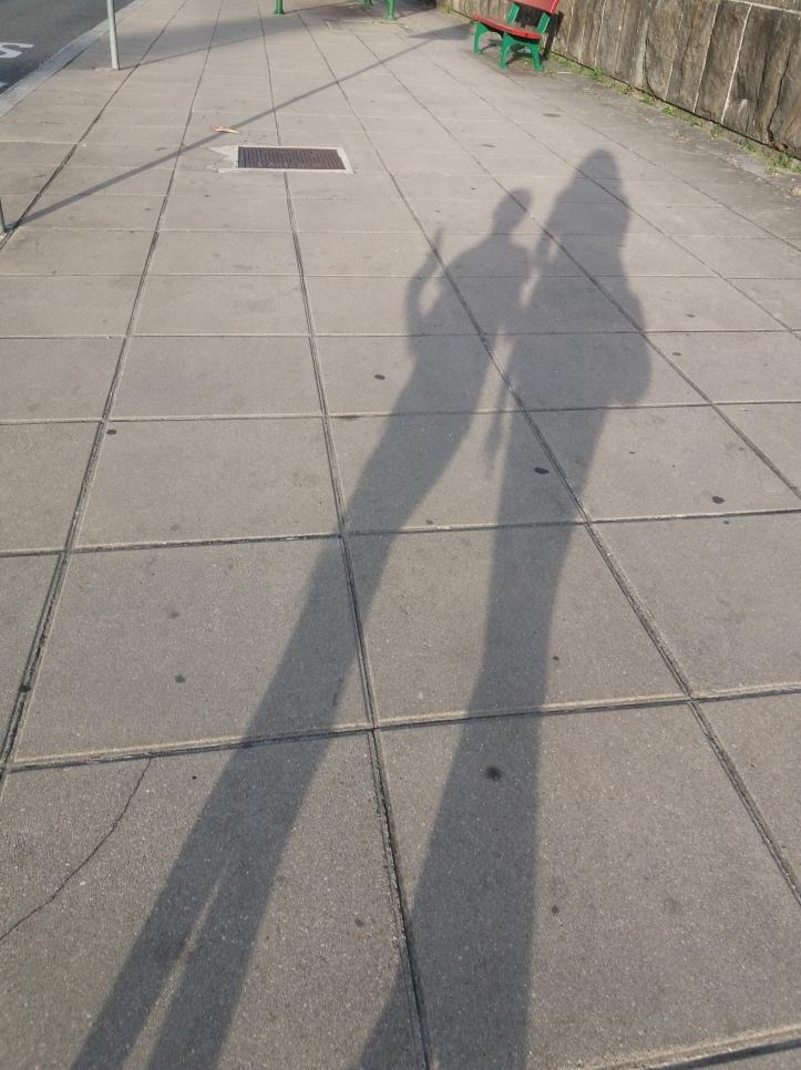 sombras alargadas